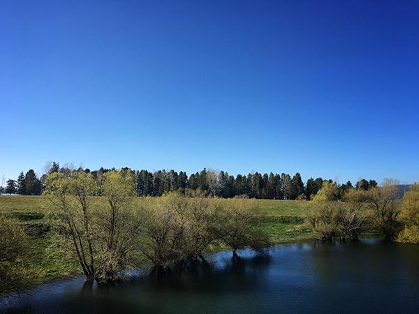 Sila-lago Cecita-